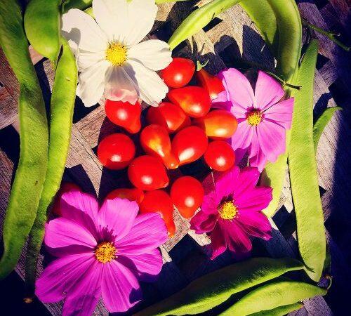fruit-vegetables- organic